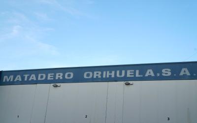Matadero Orihuela, SA y la sequía