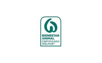 Matadero Orihuela consigue el certificado de bienestar animal
